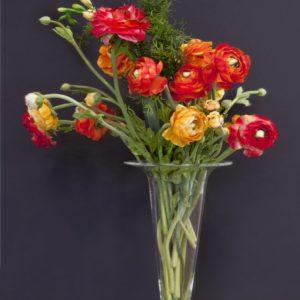 silkflower 2012-15