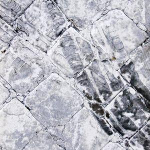 2007 City traces - 964
