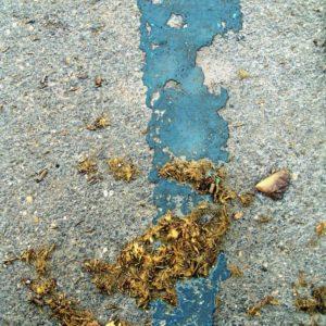 2011 City traces - 977
