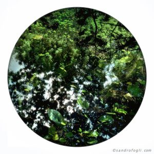 2014 planet - 4