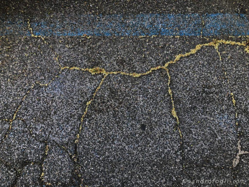 2018 City traces - 18