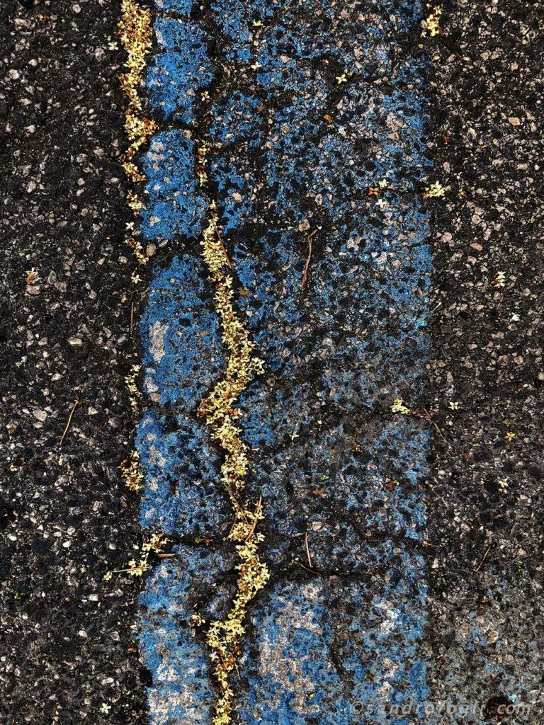 2018 City traces - 19