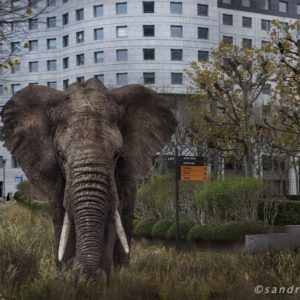 Fantastikworld 2016, Paris La Défense, elephant