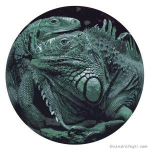 Animal Table - Iguana 2