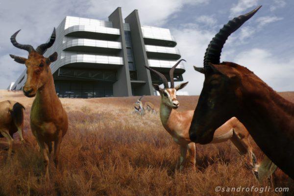 Fantastikparks 2014, Wildness still resists 2