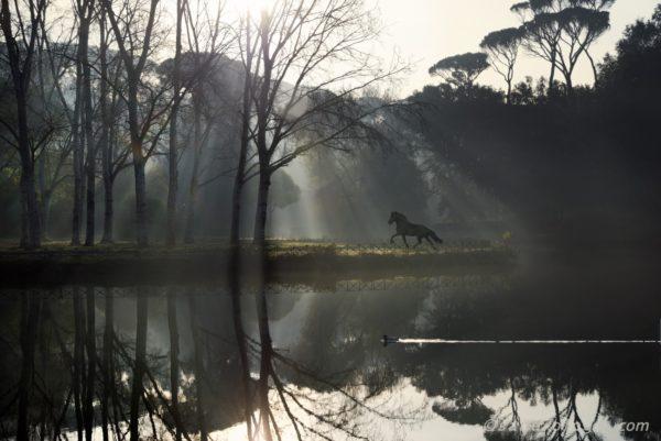 Fantastikworld 2016, romapark black horse