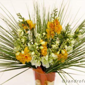 silkflower 2012-13