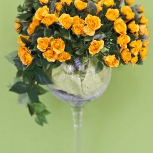 silkflower 2012-16