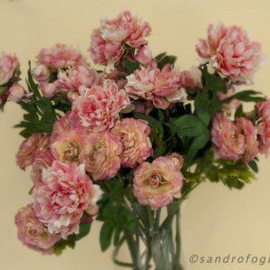 silkflower 2012-9