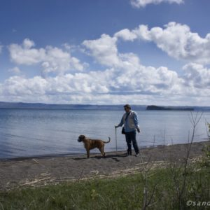 Dog Story - Bolsena Lake